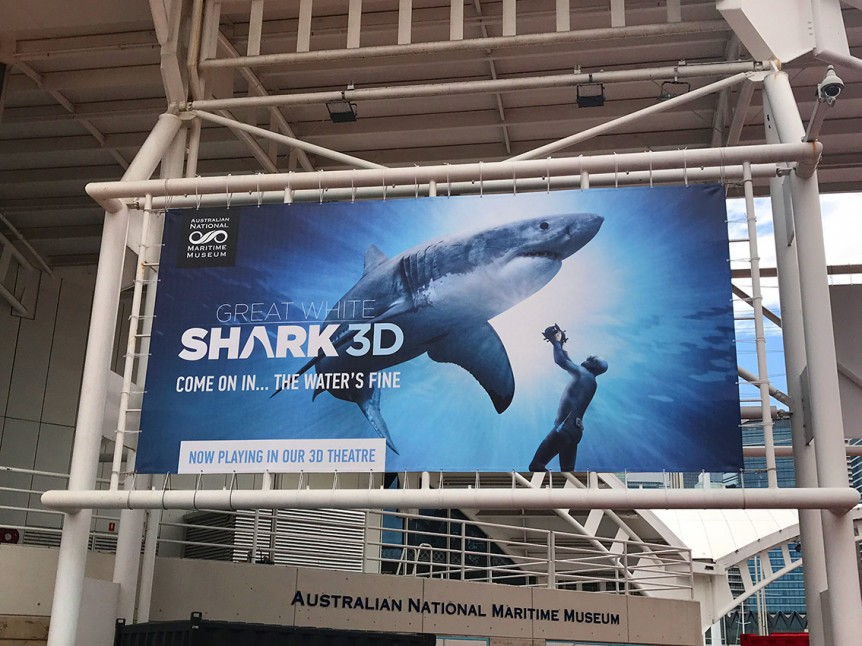 shark-poster-web